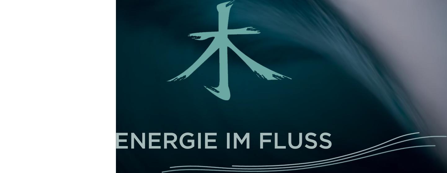FENG SHUI - Energie im Fluss | Elke Cassebaum | beratung - hamburg - schlafzimmer - kueche - arbeitszimmer - eingang - garten - brunnen - farben - elemente - einrichten - ruhe - gelassenheit - feng shui ausbildung - Projekte